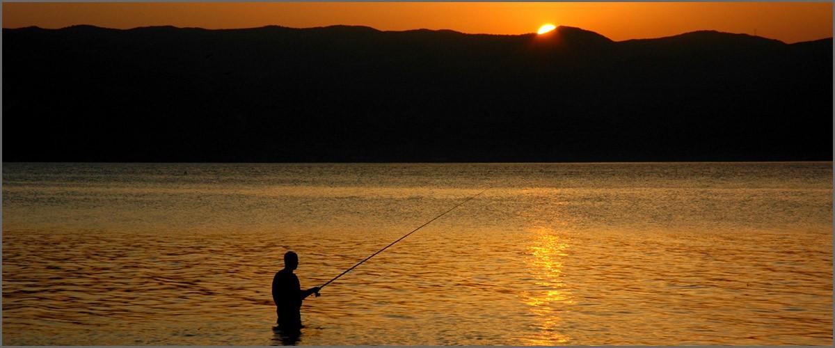Artículos para la practica de la pesca deportiva